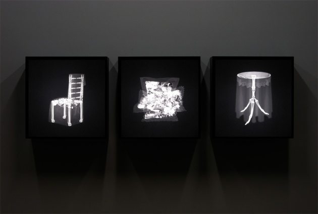 X-ray Visions and Morphine Dreams (installation view) ightboxes with Duratrans Light Jet print mounted on acrylic 24H x 24W inches each.